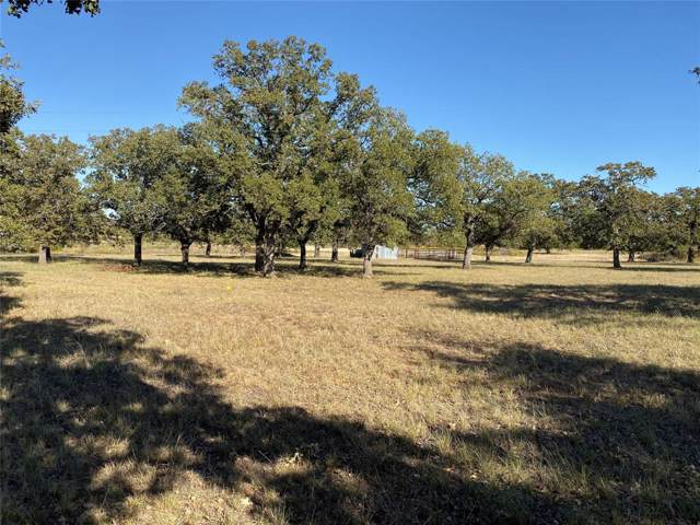 Lot 5 Cool Junction Road, Millsap, TX 76066 (MLS #14224074) :: Ann Carr Real Estate