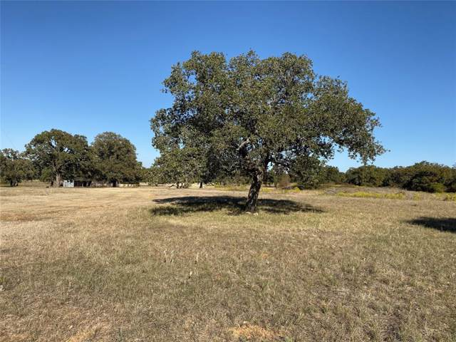 Lot 7 Cool Junction Road, Millsap, TX 76066 (MLS #14224233) :: Real Estate By Design