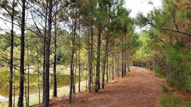 1470 An County Road 483, Palestine, TX 75803 (MLS #14225363) :: Real Estate By Design