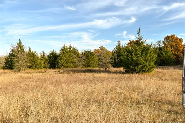 2130 Mcconnell Road, Gunter, TX 75058 (MLS #14225489) :: Robbins Real Estate Group