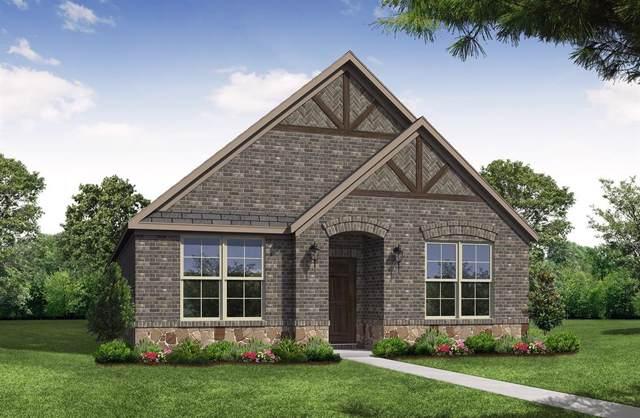 7308 Elm Grove Lane, Little Elm, TX 76227 (MLS #14225901) :: The Real Estate Station