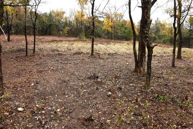 Lot 3 Pecan Gap Street, Denison, TX 75020 (MLS #14226303) :: The Chad Smith Team