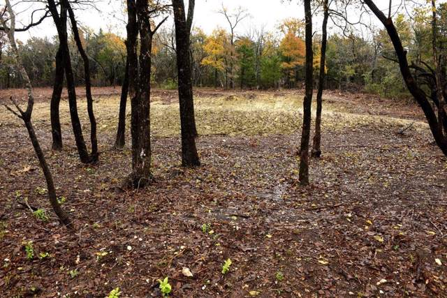 Lot 4 Pecan Gap Street, Denison, TX 75020 (MLS #14226316) :: The Chad Smith Team