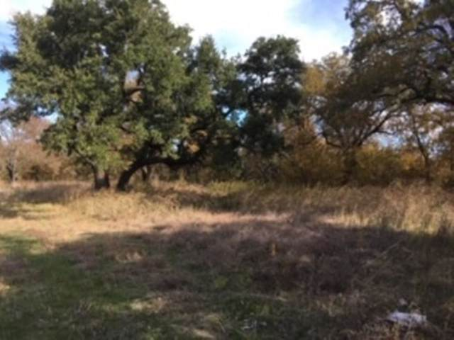 100 Buckner Road, Lipan, TX 76462 (MLS #14226970) :: The Daniel Team