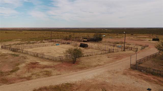 TBD Fm 600, Anson, TX 79501 (MLS #14227534) :: Frankie Arthur Real Estate