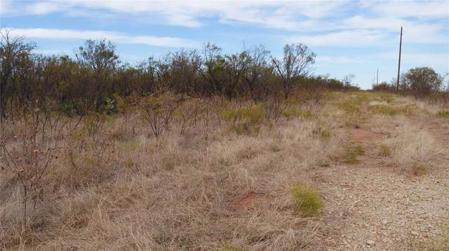 TBD Hwy 180, Anson, TX 79501 (MLS #14227546) :: Frankie Arthur Real Estate