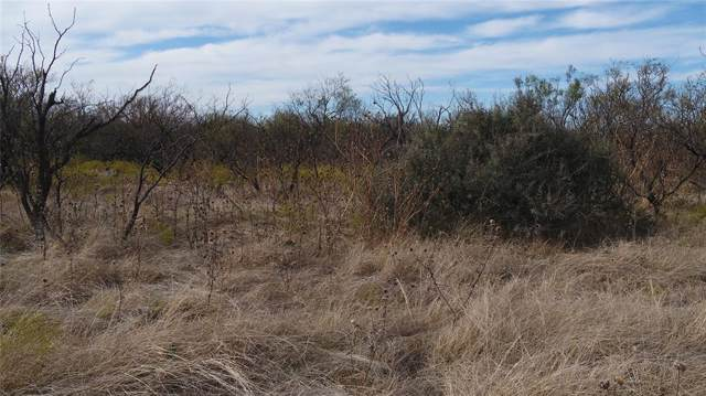 TBD County Road 329, Anson, TX 79501 (MLS #14227564) :: Frankie Arthur Real Estate