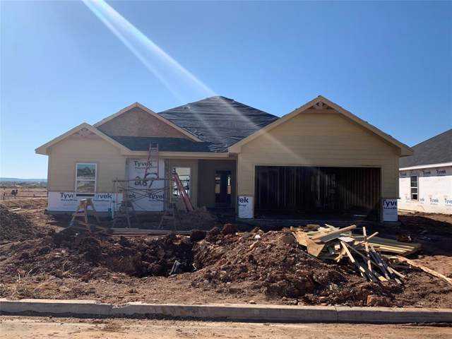 267 Sophia Lane, Abilene, TX 79602 (MLS #14228009) :: Ann Carr Real Estate