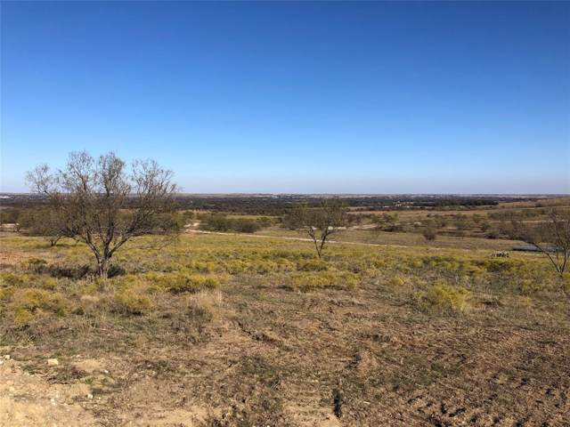 185 Overlook Drive, Aledo, TX 76008 (MLS #14228401) :: The Daniel Team
