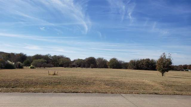 2436 Sweeping Meadows Lane #1293, Cedar Hill, TX 75104 (MLS #14228402) :: RE/MAX Pinnacle Group REALTORS