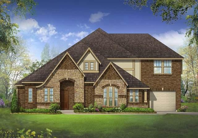3021 San Marcos Drive, Rockwall, TX 75032 (MLS #14229551) :: The Heyl Group at Keller Williams