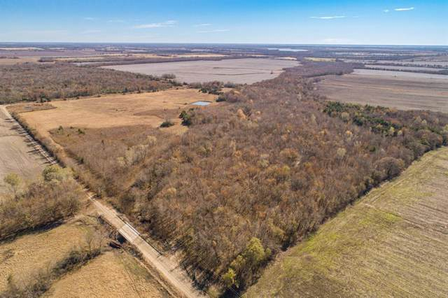 TBD County Road 3220, Ben Franklin, TX 75415 (MLS #14229847) :: Team Hodnett