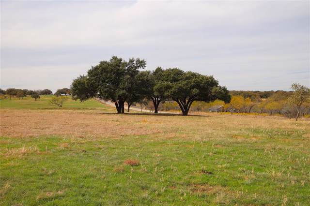 Lot 2 Dyer Road, Lipan, TX 76462 (MLS #14229858) :: RE/MAX Town & Country