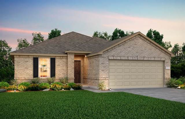 310 Onslow Drive, Forney, TX 75126 (MLS #14230047) :: RE/MAX Town & Country