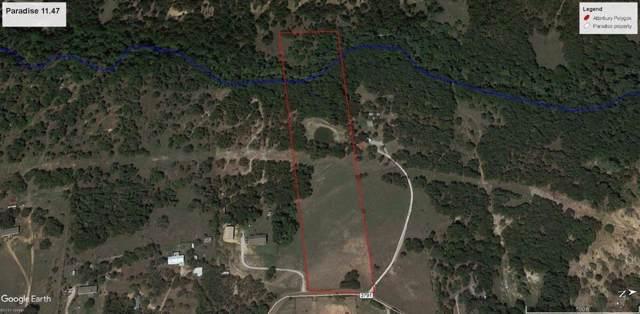 1390 County Road 3791, Paradise, TX 76073 (MLS #14230205) :: Potts Realty Group