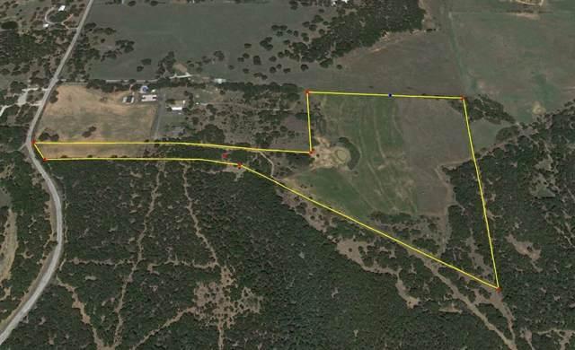 00 Glidewell Road, Mineral Wells, TX 76067 (MLS #14230717) :: The Kimberly Davis Group