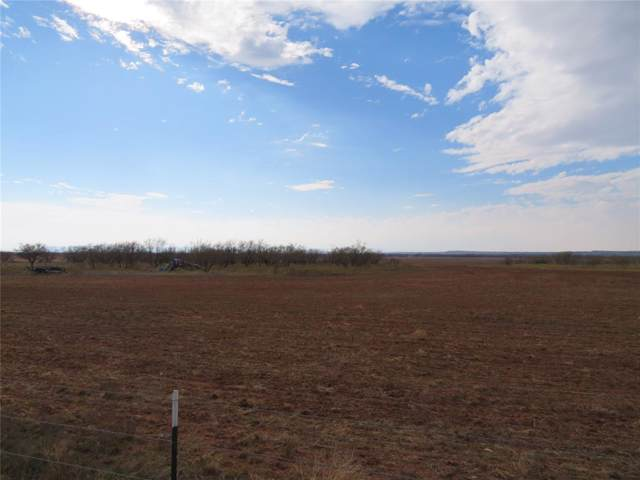 TBD County Road 379, Merkel, TX 79536 (MLS #14231062) :: The Kimberly Davis Group