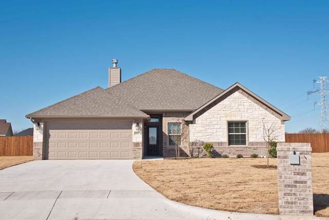 131 Bear Hollow Circle, Stephenville, TX 76401 (MLS #14231122) :: The Kimberly Davis Group