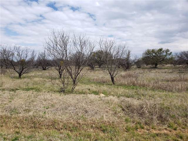Lot # 3 Feather Bay Drive, Lake Brownwood, TX 76801 (MLS #14231604) :: Maegan Brest | Keller Williams Realty