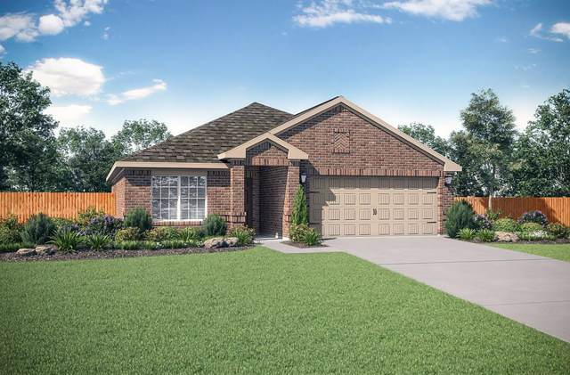 3021 Watercrest Drive, Sanger, TX 76266 (MLS #14231751) :: The Mauelshagen Group