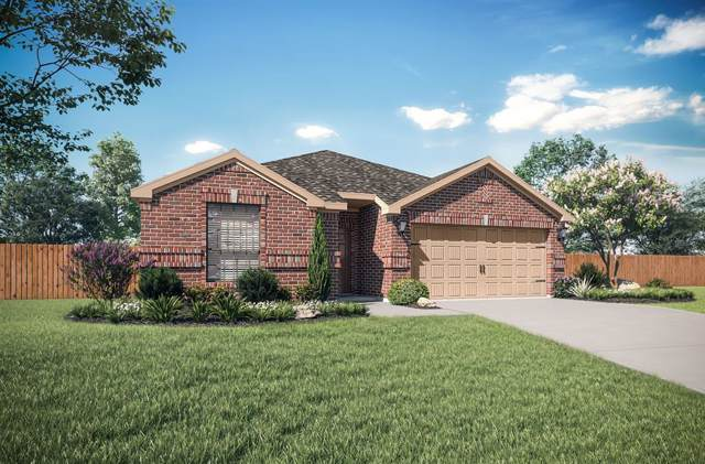 3023 Watercrest Drive, Sanger, TX 76266 (MLS #14231782) :: The Mauelshagen Group