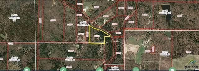 208 Private Road 7991, Winnsboro, TX 75494 (MLS #14232162) :: The Kimberly Davis Group