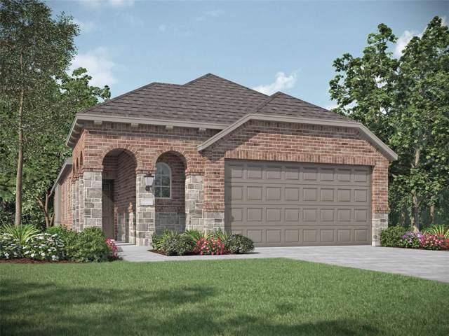 3951 Chesapeake Lane, Heartland, TX 75126 (MLS #14232213) :: The Kimberly Davis Group