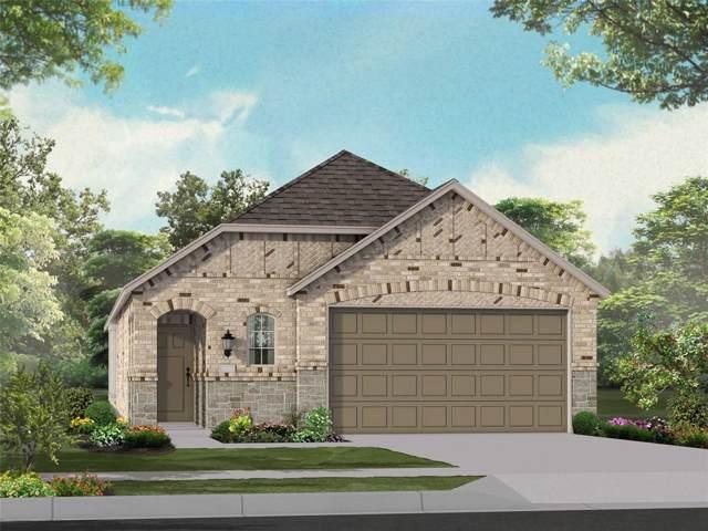 3952 Chesapeake Lane, Heartland, TX 75126 (MLS #14232231) :: The Kimberly Davis Group