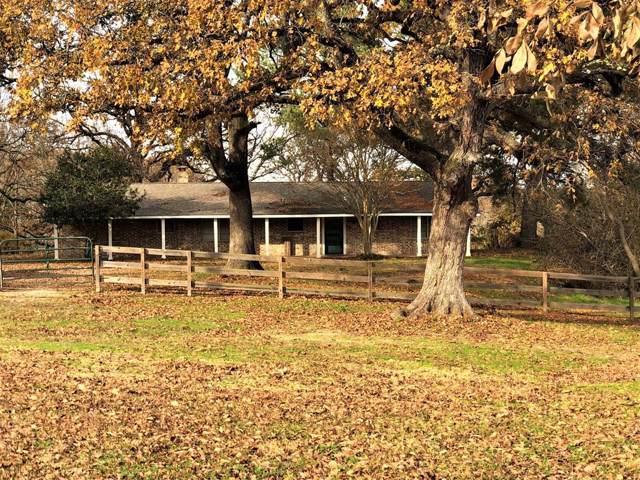 7333A Cr 4712, Larue, TX 75770 (MLS #14232417) :: Real Estate By Design