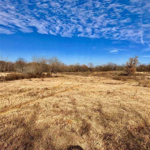 1084 County Road 2389, Pickton, TX 75471 (MLS #14233185) :: Dwell Residential Realty