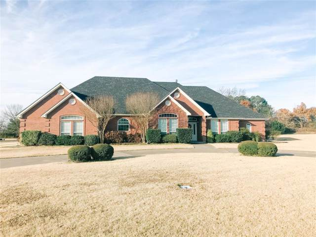 407 Briarwood Court, Sulphur Springs, TX 75482 (MLS #14233252) :: All Cities Realty