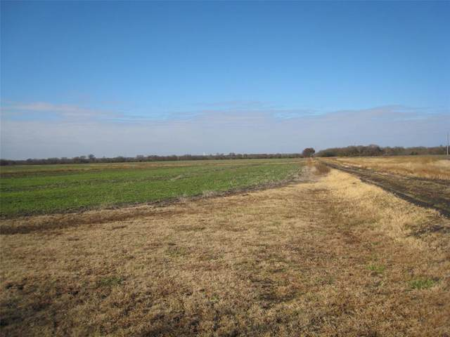 1668 County Road  2730, Farmersville, TX 75442 (MLS #14233359) :: RE/MAX Town & Country