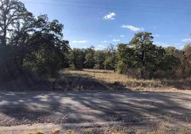 TBD 7 Live Oak Road, Santo, TX 76472 (MLS #14234160) :: Dwell Residential Realty