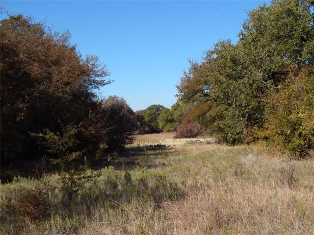 TBD Hwy 16 N, De Leon, TX 76444 (MLS #14234703) :: The Kimberly Davis Group