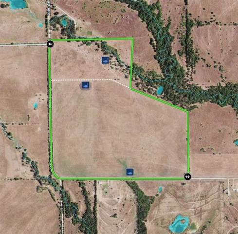 114ac Vzcr 3819, Wills Point, TX 75169 (MLS #14236169) :: The Heyl Group at Keller Williams