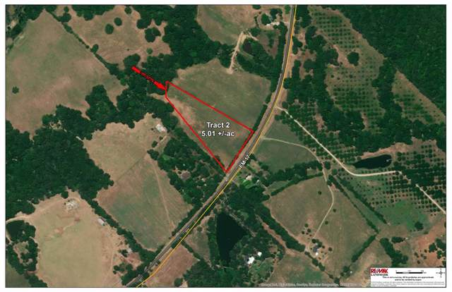 00 Fm Road 17, Grand Saline, TX 75140 (MLS #14236255) :: RE/MAX Town & Country