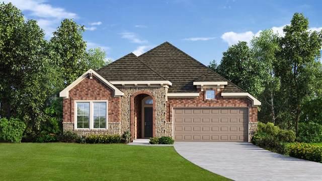 2619 High Bluff Drive, Mansfield, TX 76063 (MLS #14236419) :: The Hornburg Real Estate Group
