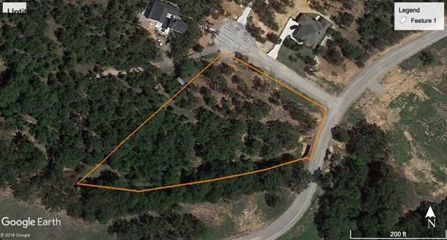 4 Lazy Creek Crossing, Brock, TX 76087 (MLS #14237272) :: The Kimberly Davis Group
