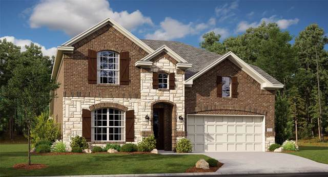 864 Lauren Grove Lane, Forney, TX 75126 (MLS #14237789) :: The Kimberly Davis Group
