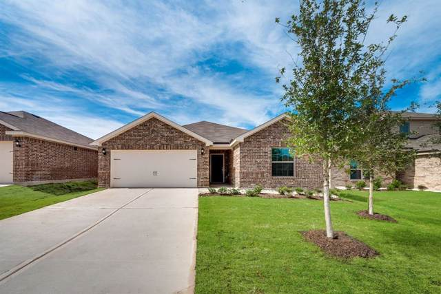 4209 Calla Drive, Forney, TX 75126 (MLS #14238262) :: The Kimberly Davis Group