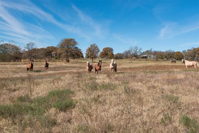9213 Fm 902, Collinsville, TX 76233 (MLS #14238645) :: Dwell Residential Realty