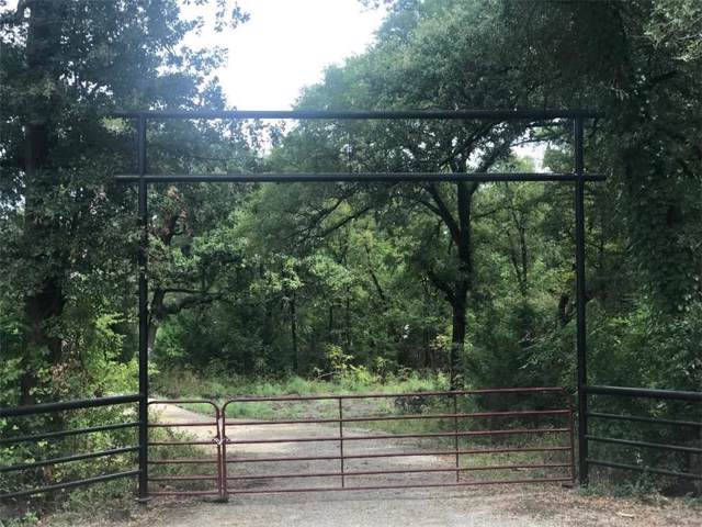 000 #6 County Rd 4020, Savoy, TX 75479 (MLS #14239023) :: Baldree Home Team