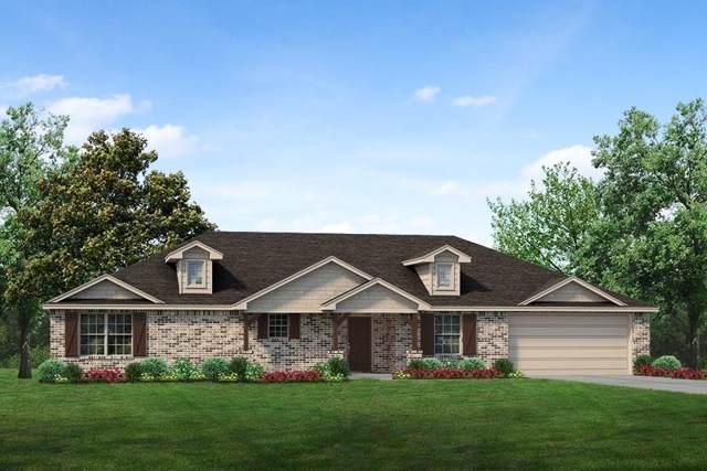3905 Chippewa Court, Granbury, TX 76048 (MLS #14239472) :: The Kimberly Davis Group