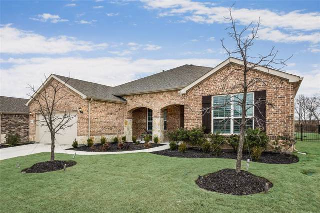 8154 Turtle Beach Road, Frisco, TX 75036 (MLS #14240431) :: The Hornburg Real Estate Group