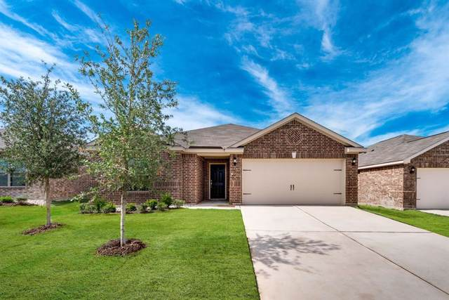 4203 Calla Drive, Forney, TX 75126 (MLS #14241382) :: The Kimberly Davis Group