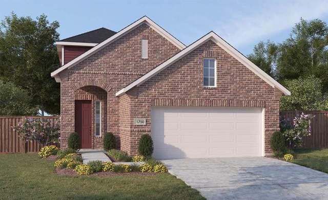 2505 Pettus Drive, Forney, TX 75126 (MLS #14241427) :: The Kimberly Davis Group