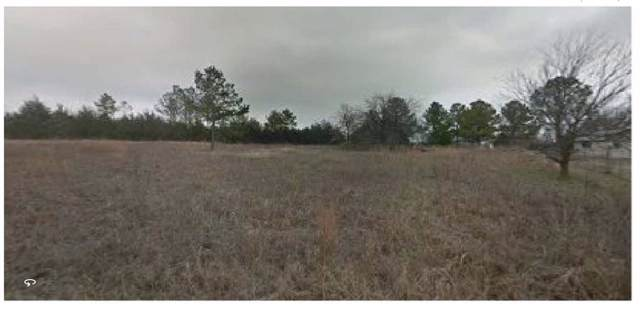 444 Lakeview Drive, Denison, TX 75020 (MLS #14241581) :: The Kimberly Davis Group
