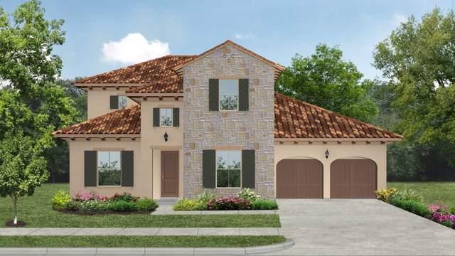 4252 Katmai Drive, Frisco, TX 75033 (MLS #14241976) :: Hargrove Realty Group