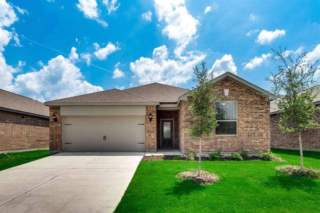 1413 Park Trails Boulevard, Princeton, TX 75407 (MLS #14241995) :: The Mitchell Group