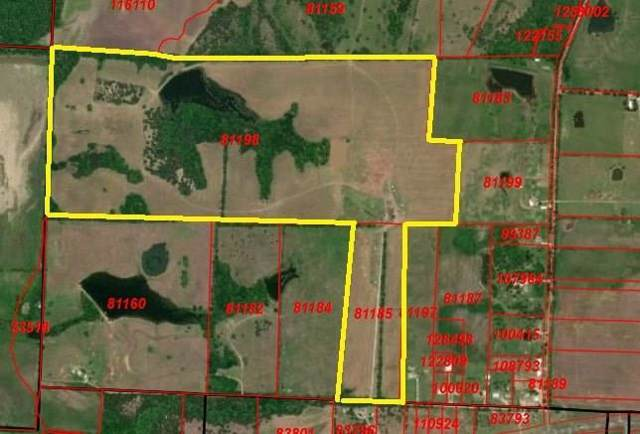 tbd County Rd 2900, Dodd City, TX 75438 (MLS #14242049) :: The Kimberly Davis Group